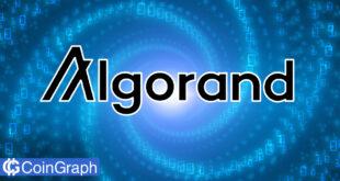 تجزیه و تحلیل Algorand، آیا اکنون زمان خرید این رمزارز است؟